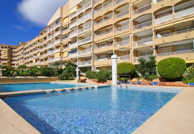 Apartamento en Calpe - APOLO VII 6-29